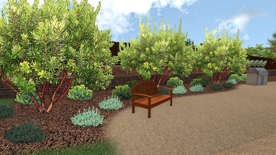 Below is a before photo and 3D rendering of a landscape design for a  Montecito property with an extreme slope drop-off in the back. - Donna Lynn, Landscape Designer: Virtual Online Landscape Design And